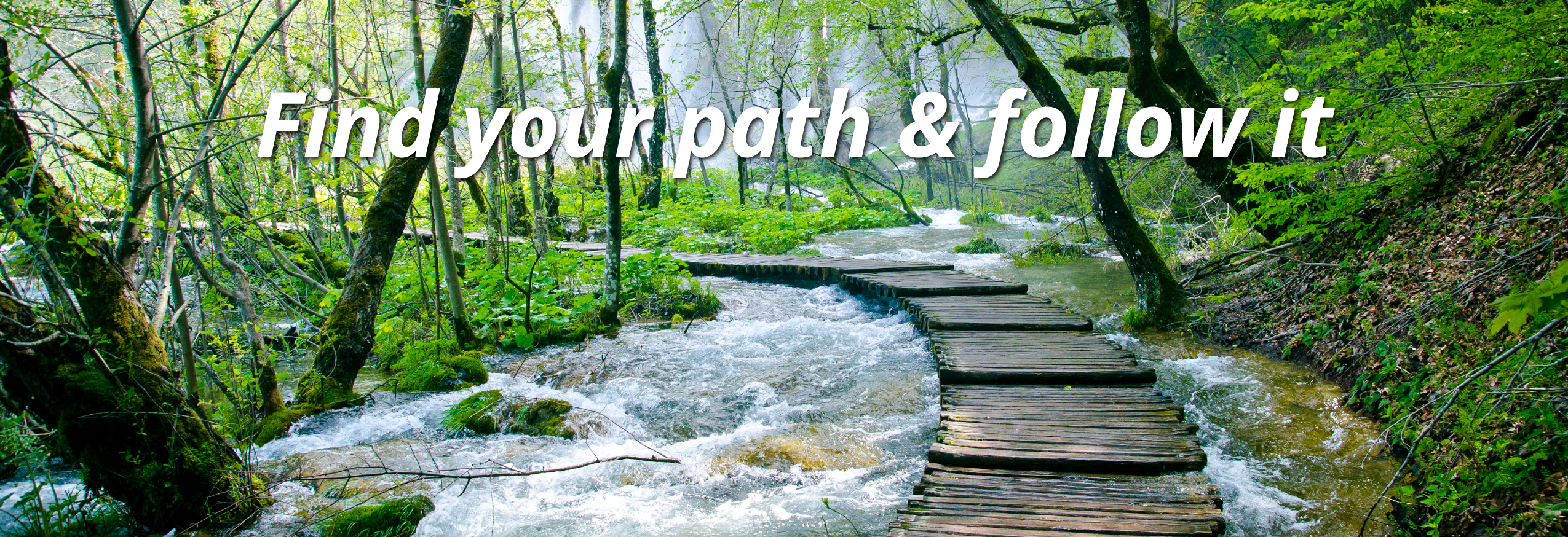 find your path and follow itpath